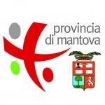 Osservatorio Lavoro - Provincia di Mantova